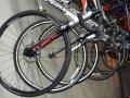 A1A Cycle Works - Bicycle Sales Service Rental - St Augustine FL Beach Cruisers (43).jpg