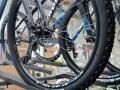 A1A Cycle Works - Bicycle Sales Service Rental - St Augustine FL Beach Cruisers (46).jpg