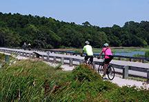 Biking in Huntington Beach State Park, Murrells Inlet, South Carolina